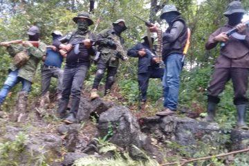 Surge GRUPO GUERRILLERO en Chiapas; pide RETIRO de la GUARDIA NACIONAL y programas sociales
