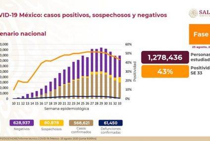 Coronavirus en México: aumentó a 61,450 muertos y a 568,621 contagios