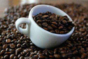 Incrementa consumo y exportación de café orgánico: productores