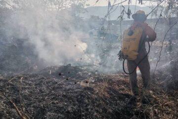 Chiapas, el tercer estado a nivel nacional con mayores afectaciones por incendios
