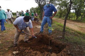 Invitan a sumarse a reforestar en el Parque Nacional Cañón del Sumidero