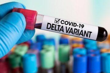 En Chiapas se descarta presencia de nueva cepa del coronavirus
