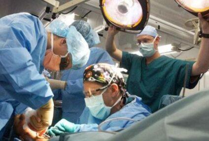 Realizan con éxito el primer trasplante experimental de un riñón de cerdo a un ser humano